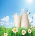 دراسة طيبة حديثة تكشف عن فوائد شرب الحليب كامل الدسم
