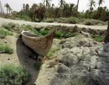 العراق يحاول مواجهة الجفاف ومخاوف من زيادة التصحر