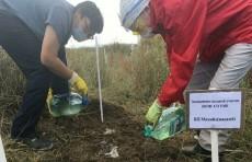 """اكتشاف أحياء مجهرية مقاومة للتجمد يمكنها """"فلترة"""" التربة"""