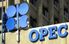 أوبك: العالم بحاجة الى استمرار امدادات النفط والغاز