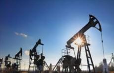 أسعار النفط تنخفض مع معاودة أوبك+ برفع إنتاجها