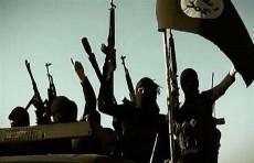 أميركا: داعش يواصل تمدده بـ20 فصيلاً خارج العراق وسوريا