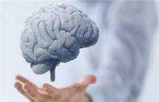 تجنبها فوراً.. 9 أطعمة تضر صحة الدماغ