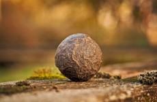 """رجل احتفظ بصخرة لسنوات """"دون علمه"""" أنها أغلى من الذهب"""