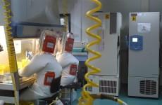 الصحة العالمية: لا نستبعد فرضية تسرب فيروس كورونا من مختبر