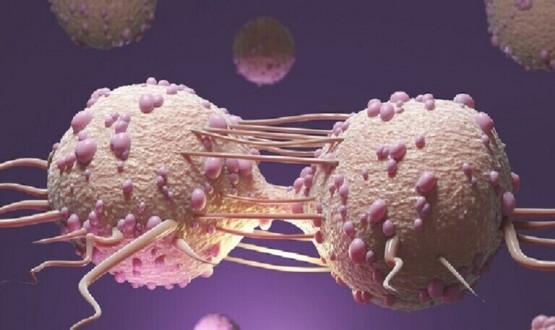 علماء روس يبتكرون مادة تزيد من فعالية العلاج الكيميائي لسرطان الرحم